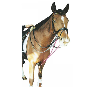 Cord and leather draw reins