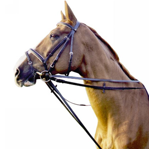 Jumping draw reins