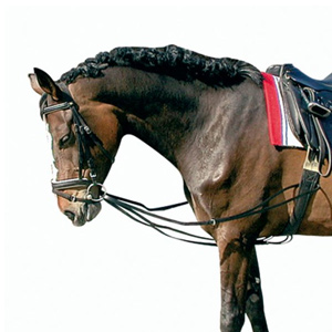 Lunging draw reins, german leather