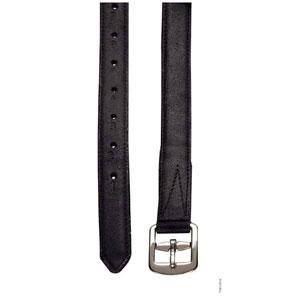 Double stirrup leather