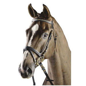 Snaffle bridle, flash noseband, brass brownband and fittings