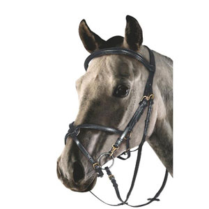 Snaffle bridle with figure of 8 noseband