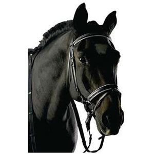 Snaffle bridle flash noseband, with decorative metal browband