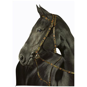 Snaffle bridle Ethno without noseband
