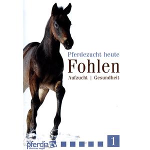 Pferdezucht heute Fohlen Nr. 01 - Aufzucht und Gesundheit